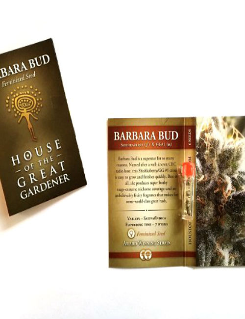 Cannabis Seed Barbara Bud Feminized (6 seeds pack)